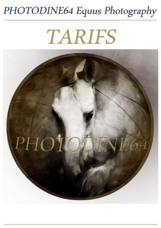 Tarifs-site