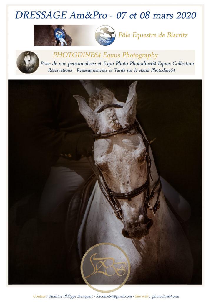 photodine64--Dressage-mars