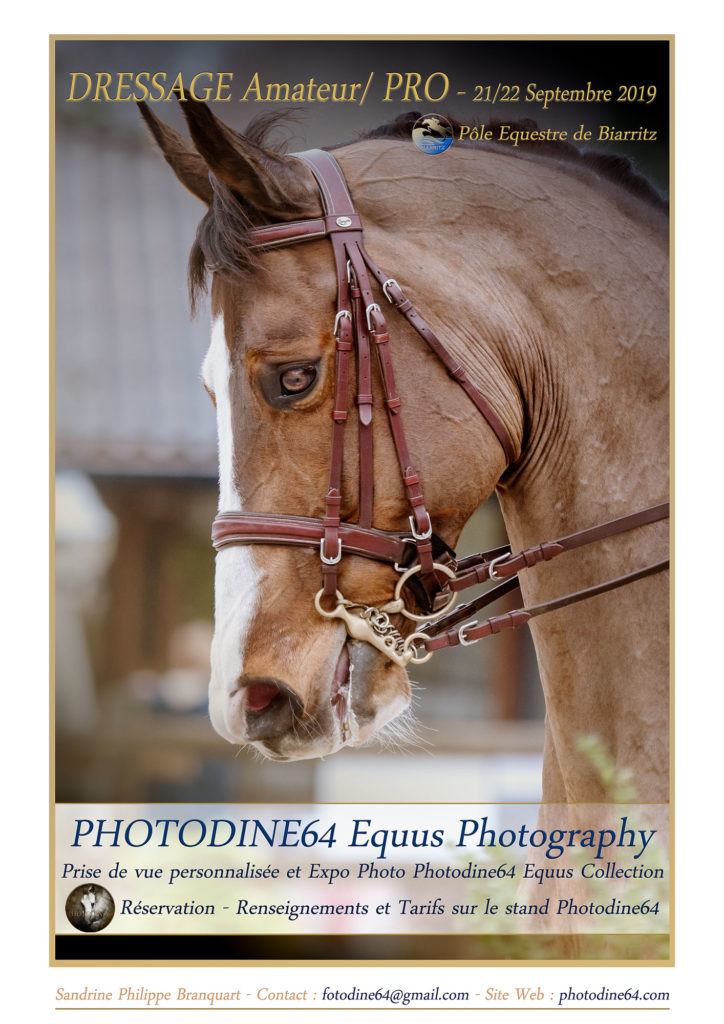 photodine64-dressage-septembre